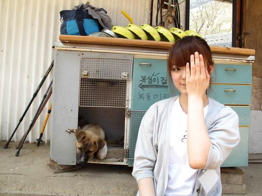 jiyuhyeon_49_resize.JPG